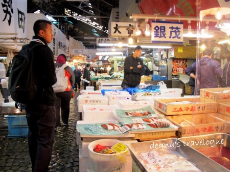 searching for Mr. Crab at Tsukiji Market